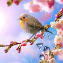 Flower Live Wallpaper icon