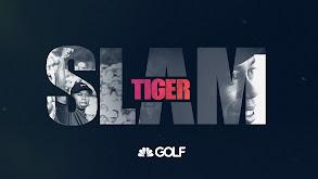 Tiger Slam thumbnail