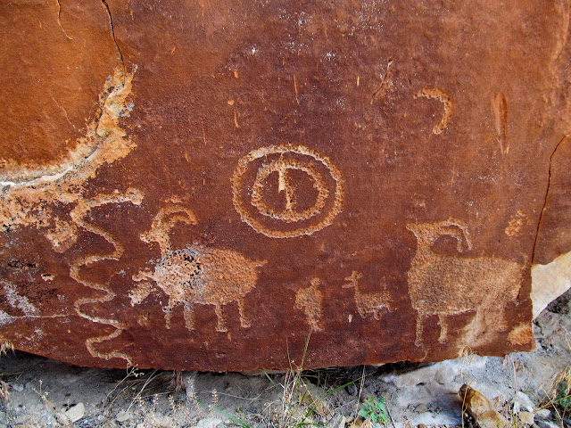 A variety of sheep petroglyphs