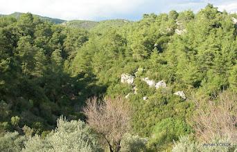Photo: Kaplan Kayası Vadisi - Çile Köyü - 50-60 Yıl önce buralarda kaplan yaşarmış. EFES-MİMAS (İYON) YOLU 4. Etabı - ALTARNATİF ROTA - 29.11.2015  (ÇİLE-AHMETBEYLİ-CLAROS Arası)