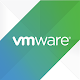 VMware Briefing Download on Windows