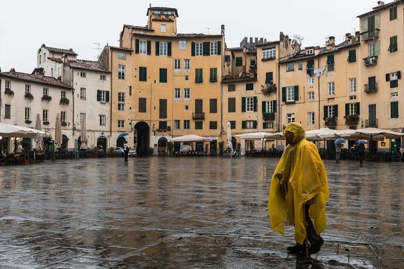 La signora in giallo di Davide_79