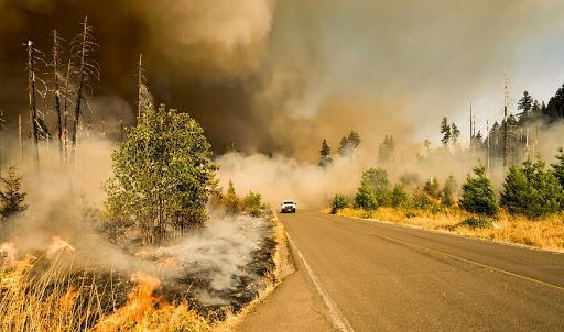 Mercury Insurance seeks to dispel California wildfire myths