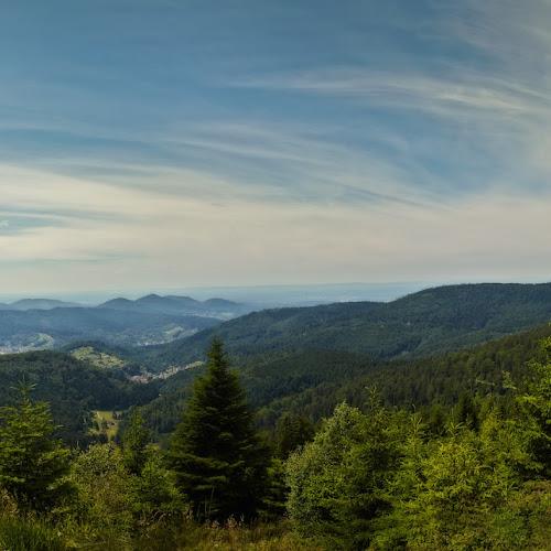 Fernblickwanderung im Schwarzwald