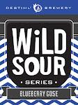 DESTIHL Wild Sour Series: Blueberry Gose