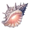 追憶の貝殻