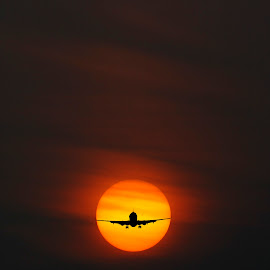 Flying into the Sun by Taariq Haneef - Transportation Airplanes ( pakistan, multan, sky, fly, aeroplane, star, cloud, pia, sun )