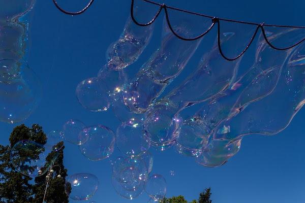 Maestro di bolle di omniaphoto