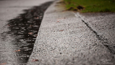 Photo: Never Ending Rain...