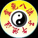 Chrono-Acupuncture Pro icon