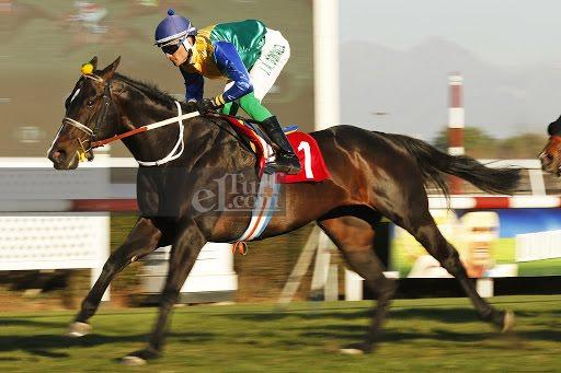 Conquer (Lookin At Lucky) se adjudicó el Clásico Dir. De Fomento Equino Y Remonta Del Ejercito (1200m-Pasto-CHS).