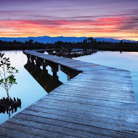 bridge to tomorrow by Rodrigo Layug - Landscapes Waterscapes ( nature, waterscape, sunrise, landscape )