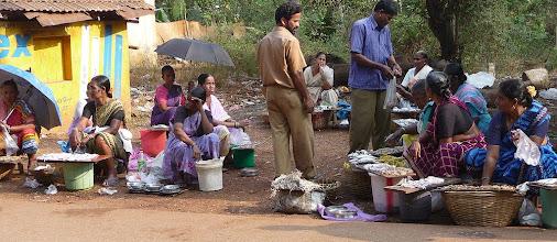 Photo: Fish Sales Chapora Goa  India