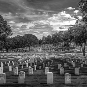 Gone but Never Forgotten by Trey Amick - Black & White Landscapes ( clouds, arlington, blackandwhite, soldiers, monochrome, honor, black and white, wide angle, death, national, landscape, national cemetery )