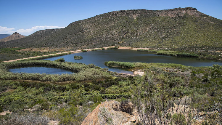 Lemoenshoek dam, situated outside Barrydale in the Western Cape. File photo: SUNDAY TIMES/DAVID HARRISON