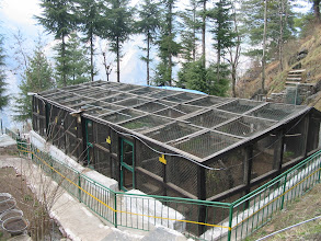 Photo: aerial view of some holding pens at Sarahan at an altitude of 2300 m in Himachal Pradesh, NW India (between Indian Kachmir and Nepal)