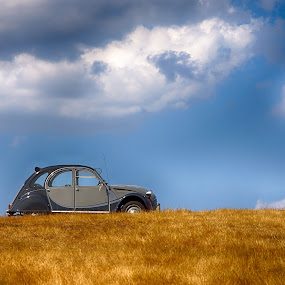 La Charleston des champs  by Sylvie Pierrat - Transportation Automobiles ( automobile, voiture, 2cv, gris, nuages, citroen, champ,  )