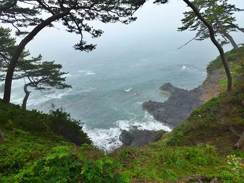歌津崎の崖