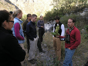 Photo: Miles (my advisor) teaching his Tropical Biodiversity class about plants in the dry forest. This one in a tobacco relative.