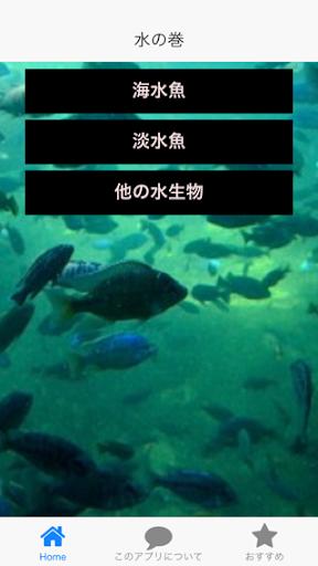 クイズ漢字 水生物