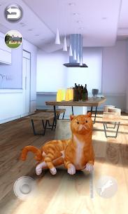 Talking Shorthair Cat 3