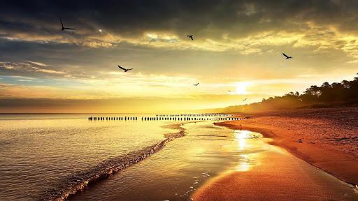 玩個人化App|海滩 动态壁纸免費|APP試玩