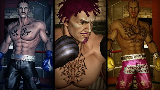 Punch Boxing 3D 3