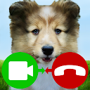fake call video puppy game APK