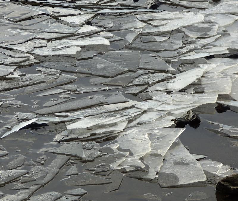 Puzzle di ghiaccio di Sabinaa