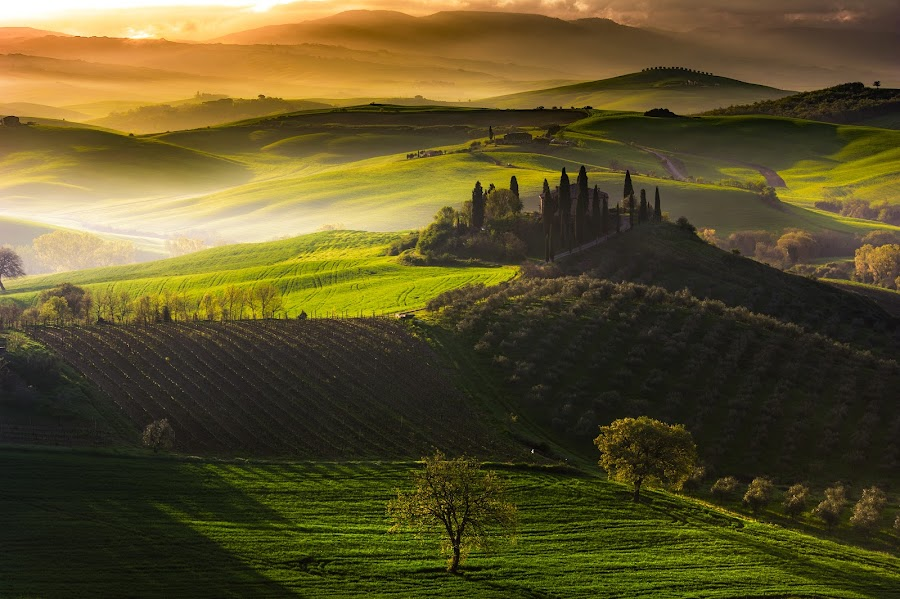 Quiete by Marco Carotenuto - Landscapes Mountains & Hills ( hills, toscana, sunrise, landscape, italy )