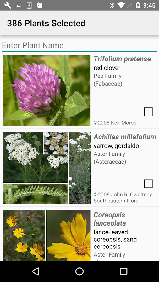 Maryland Wildflowers- screenshot