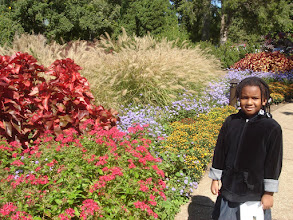 Photo: Kaleya wanted to touch the flowers, but there were bees, so that kept her at bay