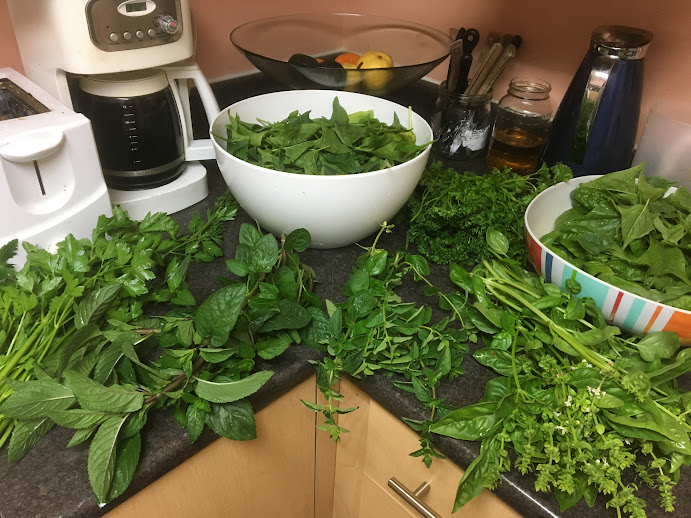 Herbs and spinach washed and ready