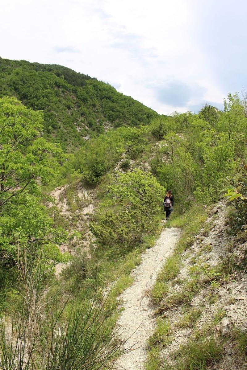 Un viaggio tra la natura, alla ricerca di se stessi di Valentina85