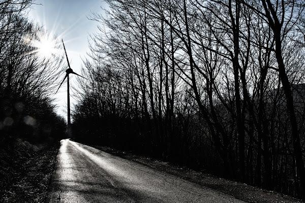 dove domina il vento di Zerosedici