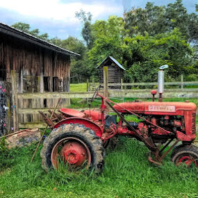 Tractor by Sandy Considine - Artistic Objects Antiques ( tractor, farming, farmland )