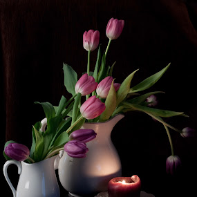The Beauty of Tulips by Sherry Hallemeier - Artistic Objects Other Objects ( purple, candlelight, vases, romantic, tulips, romance, spring, white vases, white pitchers, candle, candle holder, pitchers, pink, flowers, floral,  )