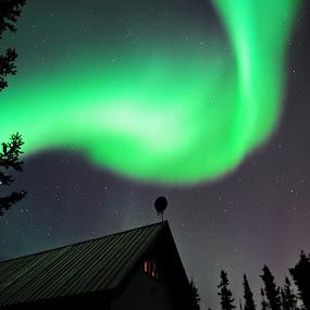 Dancing Lights by Jeff Weaver - Landscapes Starscapes ( sky, borealis, fairbanks, stars, jeff weaver, alaska, aurora, biggimote, night )