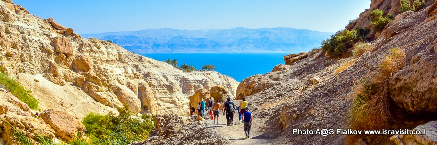 Экскурсия в Израиле на Мертвое море и в заповедник Эйн Геди.