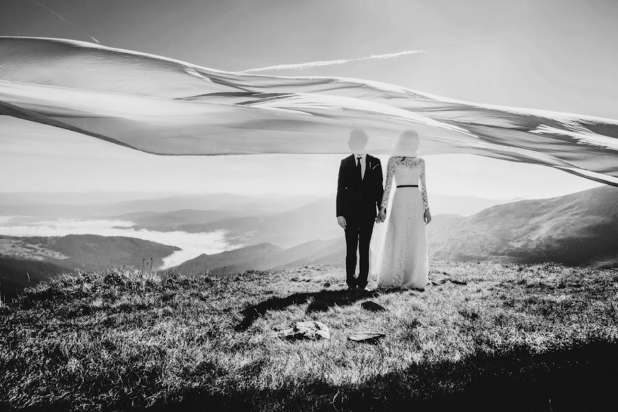 Wedding photographer Olena Kondrashova (euphoria). Photo of 17.01.2015