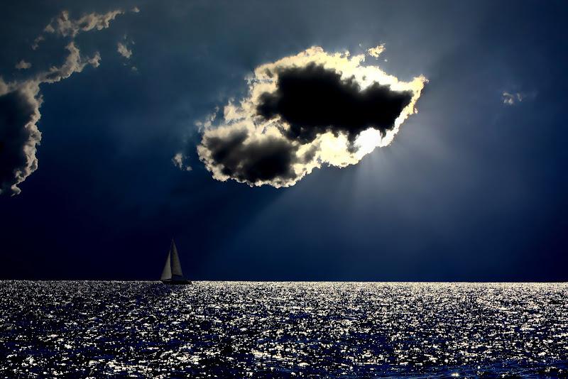 Navigando nell'ombra di filippetti livio
