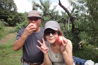 Photo: 今年も もも、桃