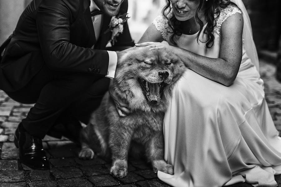 Wedding photographer Gianluca Adami (gianlucaadami). Photo of 20.08.2018