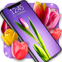 Tulip Magic Flowers 🌷 4K Spring Live Wallpaper icon