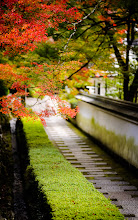 """Photo: This photo appeared in an article on my blog on Feb 7, 2013. この写真は2月7日ブログの記事に載りました。 """"Visiting My Photo Archives: Random Pretty Shots #1"""" http://regex.info/blog/2013-02-07/2201"""