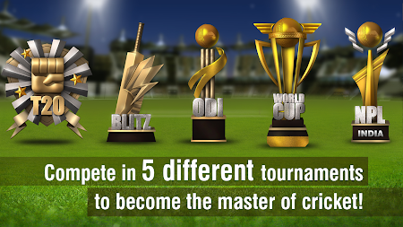World Cricket Championship 2 1.2 screenshot 175641
