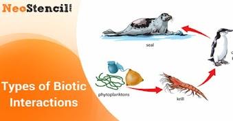 Types of Biotic Interaction