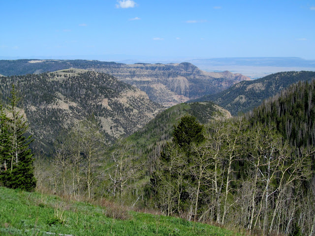 View over Mill Fork Canyon to Wild Horse Ridge on Gentry Mountain