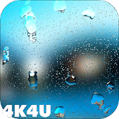 4K Rain Drops on Screen Video Live Wallpaper