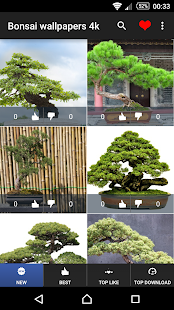 How to mod Bonsai Wallpapers 4K 1.0.10 unlimited apk for android